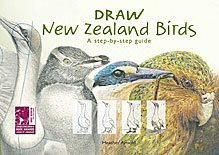 Draw New Zealand Birds